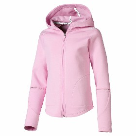 Куртка костюма Puma Evostripe Move Hooded Jkt G