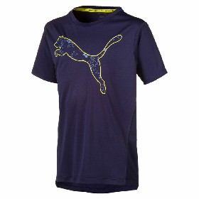 Tricou Puma Active Sports PES Graphic Tee B